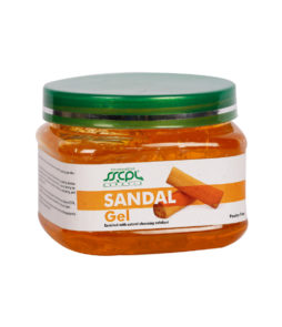 sandal_90B7266